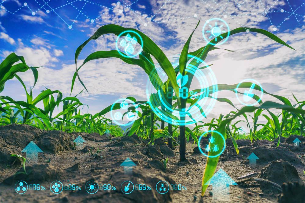 """""""Agricultura inteligente"""", la revolución del campo español"""